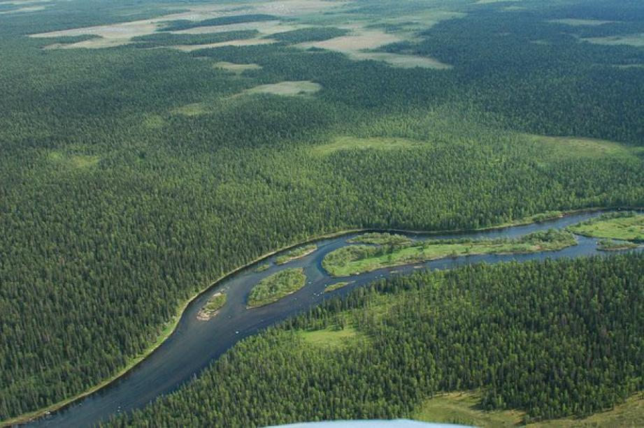 Самые длинные реки в Европе: Топ-10